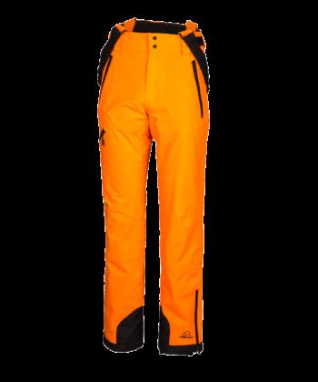 Stef orange clown fish